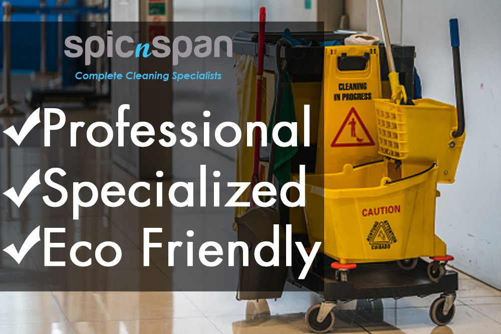 Spic n Span Cleaning Advert for February 2020